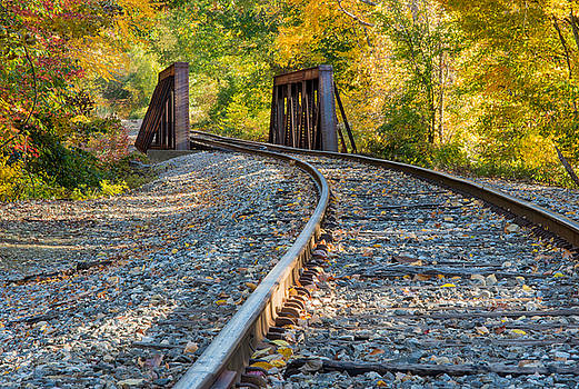 Tracks to nowhere by Georgette Grossman