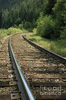 Roland Stanke - Tracks to nowhere