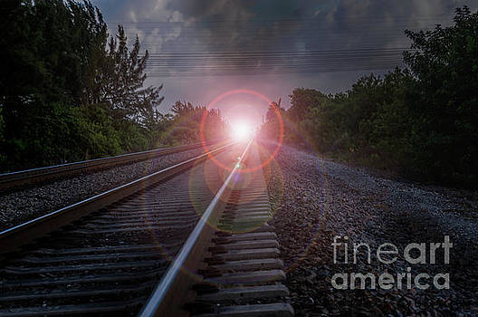 Tracks to the Sun by Thomas Gibson