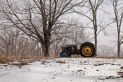 Larry Braun - Tractor by a Tree