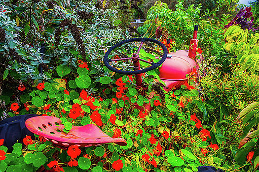 Tractor Lost In The Flowers by Garry Gay
