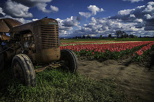Tractor N' Tulips by Ryan Smith