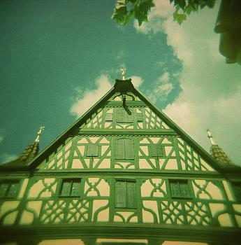 Traditional House Roth Germany Cross Process Holga Photography by Lisa Shea