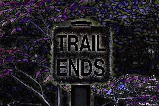 Trail Ends by Wesley Nesbitt