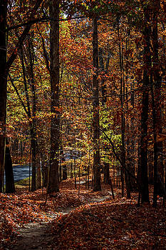 Trail OF Tears by Jim Johnson