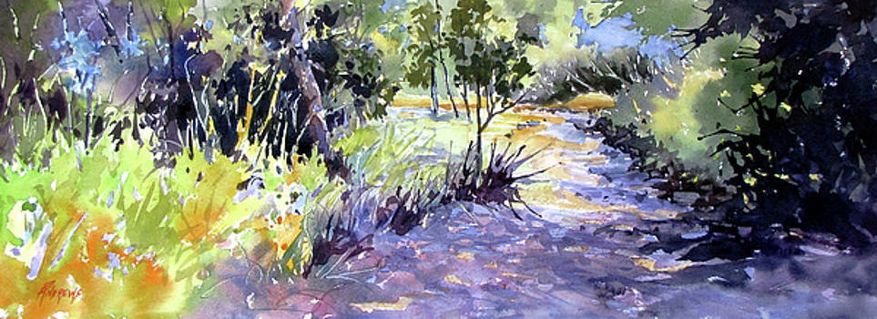 Trail Shadows by Rae Andrews