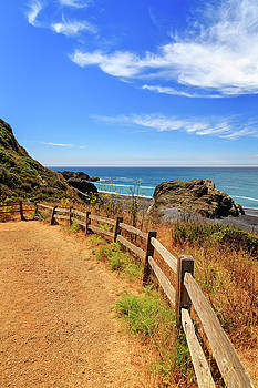 Trail To The Lost Coast by James Eddy