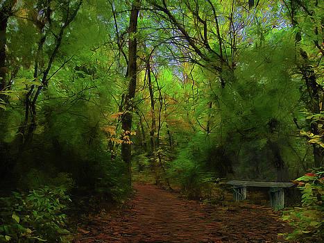 Trailside Bench by Cedric Hampton