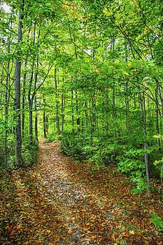 John M Bailey - Trailway