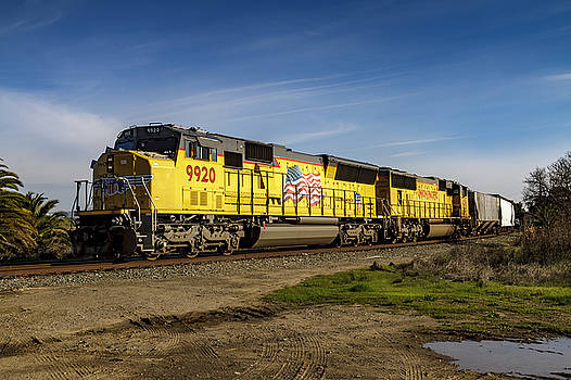 Bruce Bottomley - Train 9920 Color