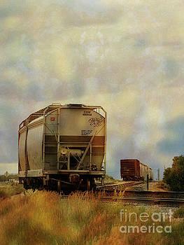 Train Cars in Limbo by Robert Ball
