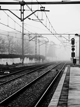 Train Tracks by Felix M Cobos