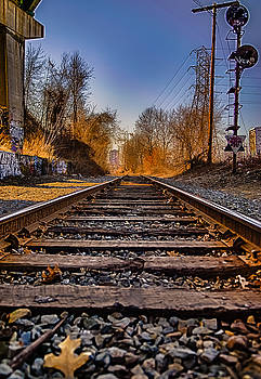 Train Tracks by Mike Berry
