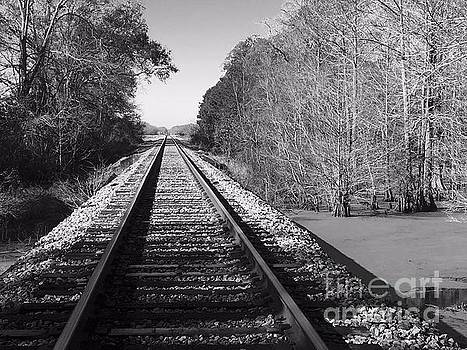 Train Trail by Robin Lewis