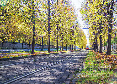 Trams and Trees in Prague by Travel and Destinations - By Mike Clegg