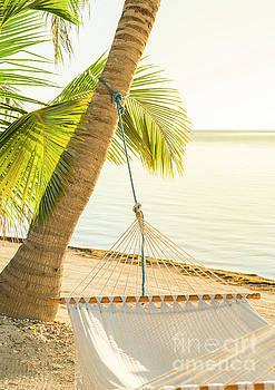 Tim Hester - Tranquil Beach Hammock