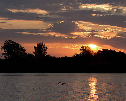 Tranquil Braden River Sunrise by Richard Goldman