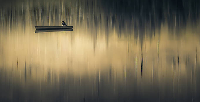 Tranquil Contemplation by Don Schwartz