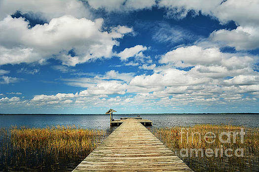 Tranquility Found by Kelly Nowak
