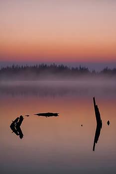 Tranquility  by Garett Gabriel