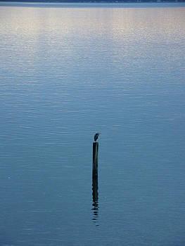 Tranquility by Lydia L Kramer