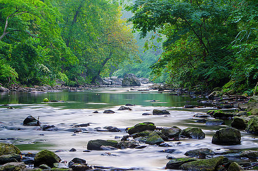 Tranquility - Wissahickon Creek by Bill Cannon