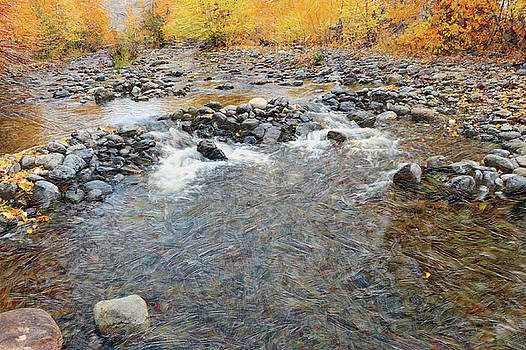 Tranquille Creek # 2 by Ed Hall