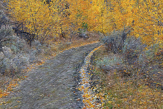 Tranquille Creek Trail # 2 by Ed Hall