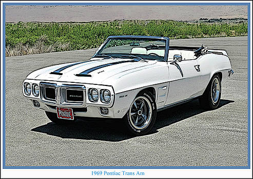 Trans Am by Frank Johnson