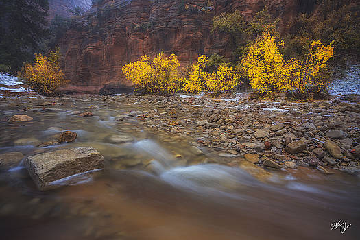 Transcendence by Peter Coskun