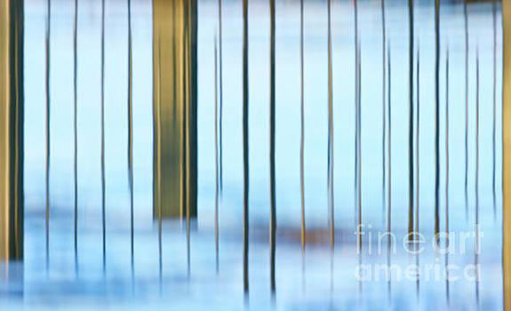 Transcendental... by Nina Stavlund