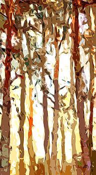 Linda Mears - Translucent Forest