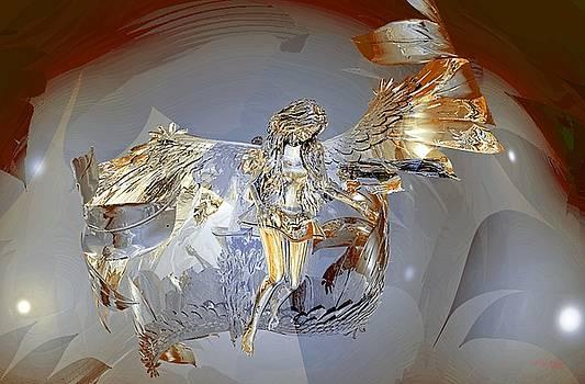 Transparent Angel by Deleas Kilgore