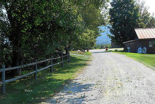 Felipe Adan Lerma - Trapp Family Lodge Rustic Road Detail