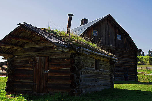 Trappers Cabin Clydesdale Barn by Robert Braley