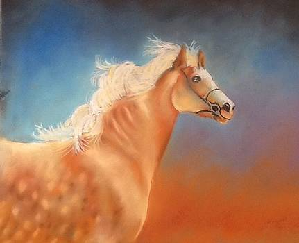 Travelling horses by Lynsey Loughrey