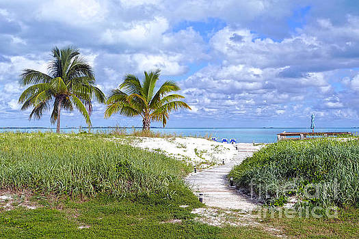 Treasure Cay Beach Boardwalk, Bahamas by Catherine Sherman