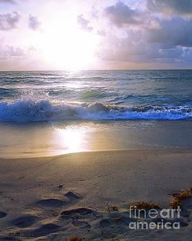 Ricardos Creations - Treasure Coast Florida Sunrise Seascape B4