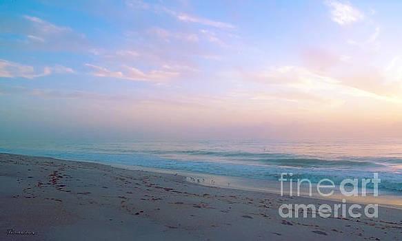 Ricardos Creations - Treasure Coast Florida Sunrise Seascape B6