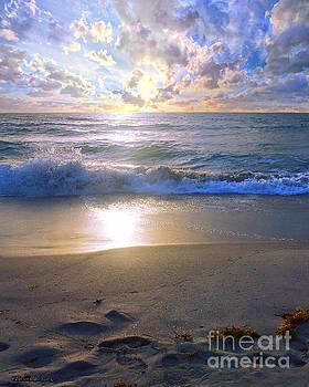 Ricardos Creations - Treasure Coast Florida Sunrise Seascape B7