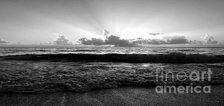 Ricardos Creations - Treasure Coast Florida Tropical Seascape Sunrise A1
