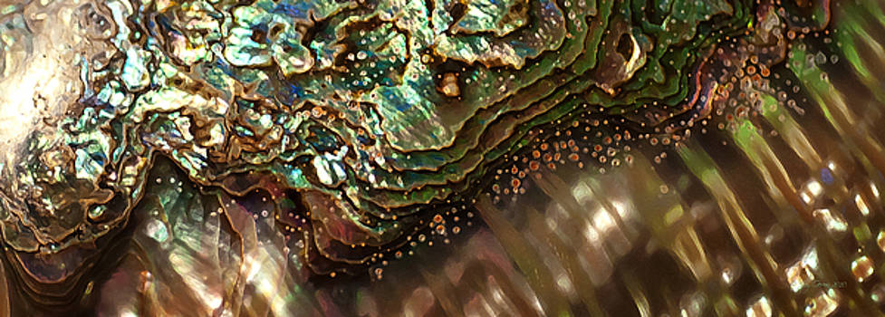 Treasures Await in a Jeweled Tide by Joy Gerow