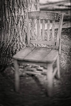 Tree and Broken Wooden Chair in BW by YoPedro