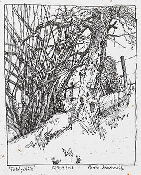 Martin Stankewitz - tree and shrubs ink drawing