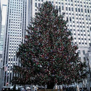 Tree At Rockefeller Center #nyc by Christopher M Moll