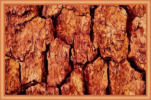 Tree Bark IN Color by Debra Lynch