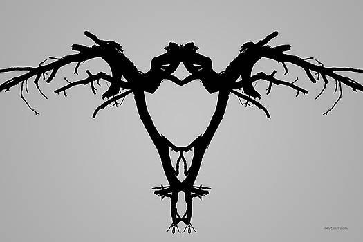 David Gordon - Tree Bird I BW
