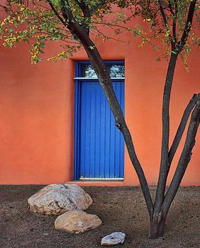 Nikolyn McDonald - Tree - Blue Door - Barrio Historico - Tucson