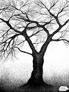 Tree by Bogdan Petrila