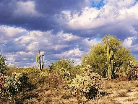Kathleen Heese - Tree Cactus
